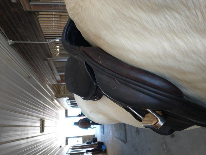 saddlefit4